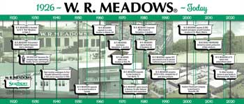 View Company Timeline Infographic